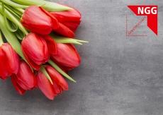 Glückwunschkarte Tulpen
