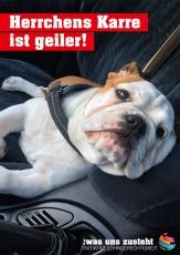Plakat Initiative Lohngerechtigkeit Motiv Hund