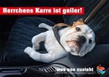 Postkarte Initiative Lohngerechtigkeit Motiv Hund