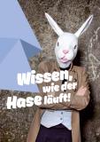 Postkarte Wissen, wie der Hase läuft! (Arbeitshilfe JAV-Portal)