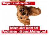 NGG-Postkarte Welpen