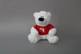NGG-Teddybär